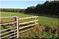 SE2350 : Woodland edge, Lindley Moor by Derek Harper