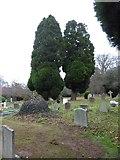 TQ0165 : Holy Trinity, Lyne: churchyard (I) by Basher Eyre