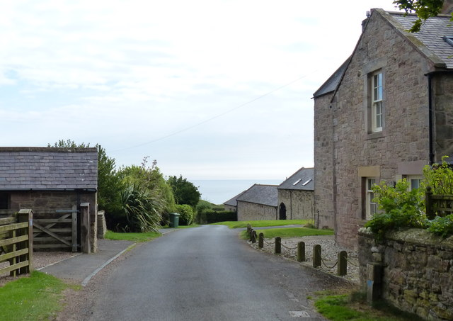 Lane and houses in Dunstan Steads