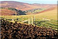 NT3031 : Fence and trampled ground, Newhall Hill by Jim Barton