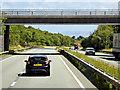 SH5969 : North Wales Expressway, Bridge at Junction 11 by David Dixon