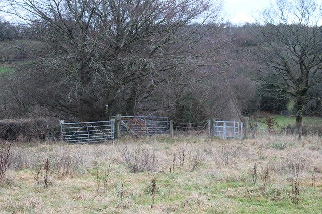 Corner of field near Twynfilkins Cottage