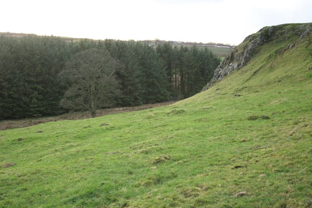 The tail of Dunglass
