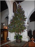 SZ7798 : SS Peter & Paul, West Wittering: oh Christmas tree by Basher Eyre