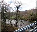 SO2416 : River Usk north of Glangrwyney Bridge, Glangrwyney by Jaggery