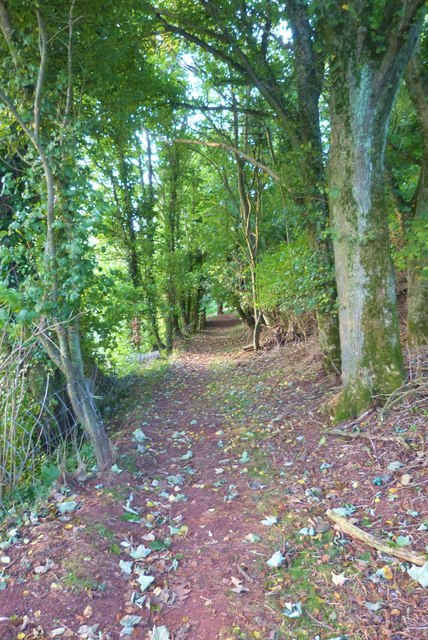 SW Coast Path on Bolt Tail, South Devon