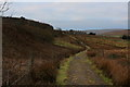 SD7992 : Pennine Bridleway between Dandrymire and Garsdale Station by Chris Heaton