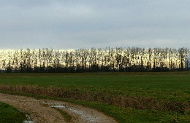 Gowdall Plantation