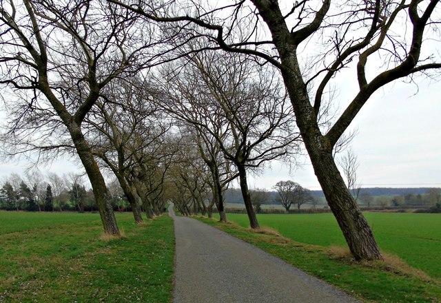 Driveway to Kingston Manor Farm
