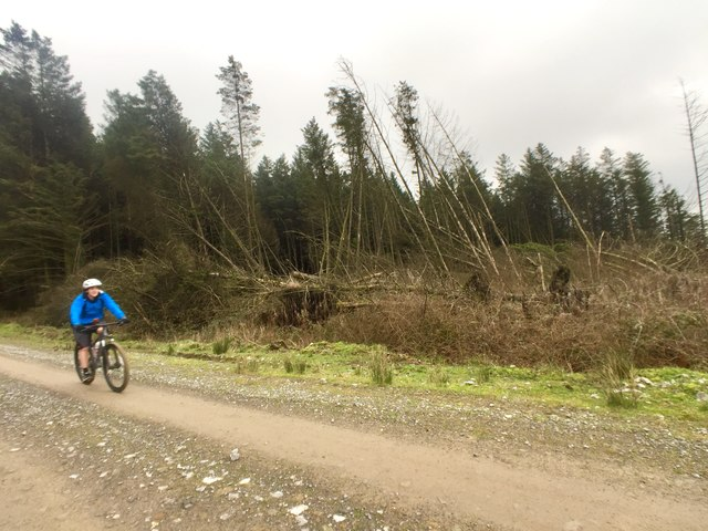 Cyclist on Mynydd Margam