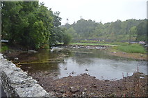 M1455 : River Cong by N Chadwick