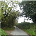 SX0662 : A Cornish hedge at the entrance to Penburthen Farm by David Smith