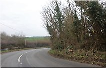 TQ4894 : Bend on Manor Road, Lambourne End by David Howard