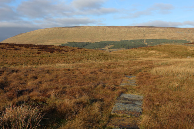 Bridleway on Will's Hill