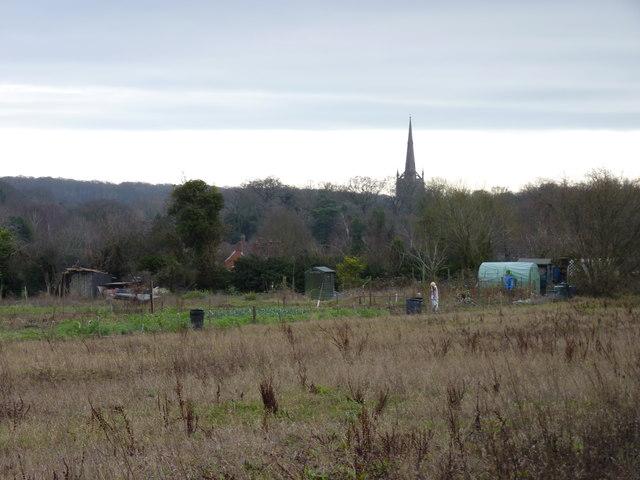 Allotments, Long Headland, Ombersley