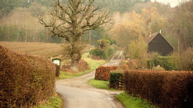 Bend in Little Tarrington Lane