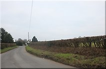 TQ4795 : New Road, Lambourne End by David Howard