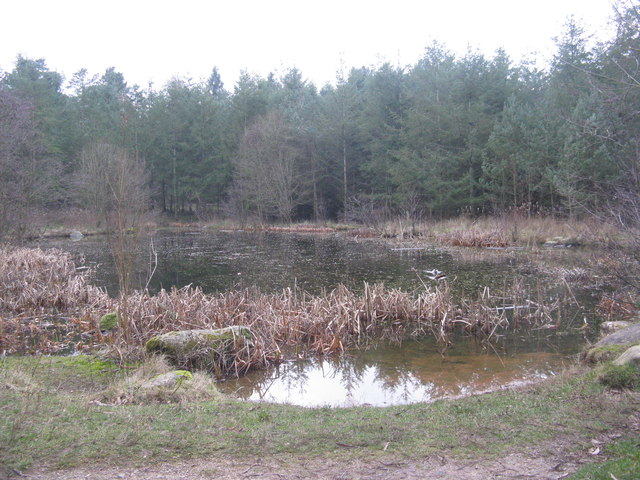 Meadow View pond at Center Parcs