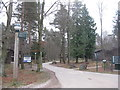 NY5827 : Three Oaks at Whinfell by M J Richardson
