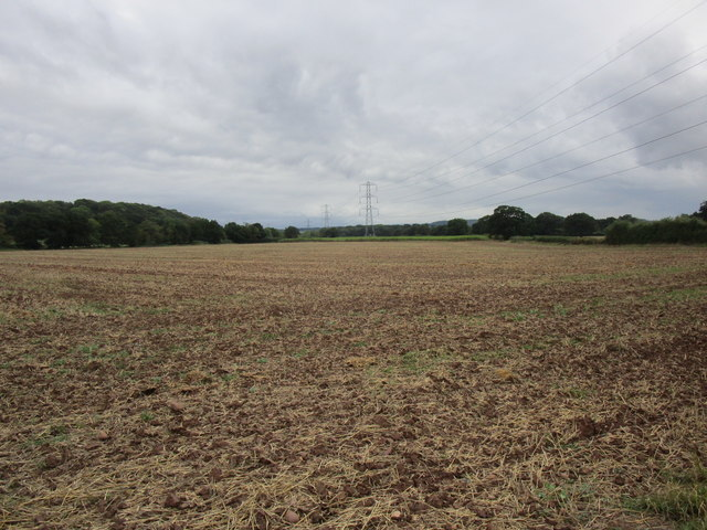 Harrowed field and pylons