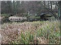 TL8293 : Bridges over streams to Lynford Lakes by David Pashley