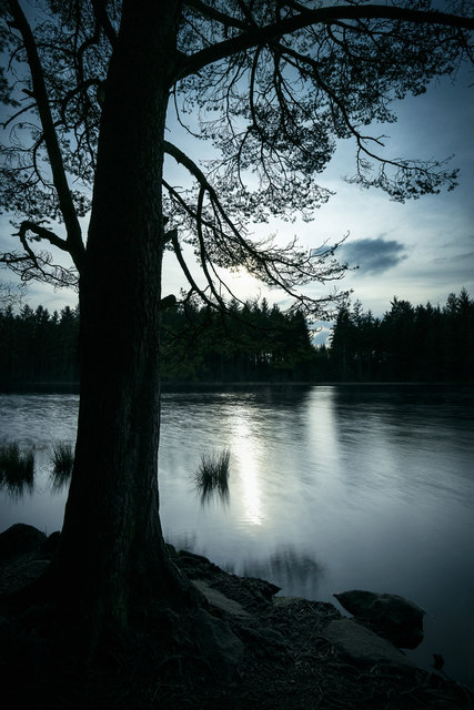 Plantain Loch