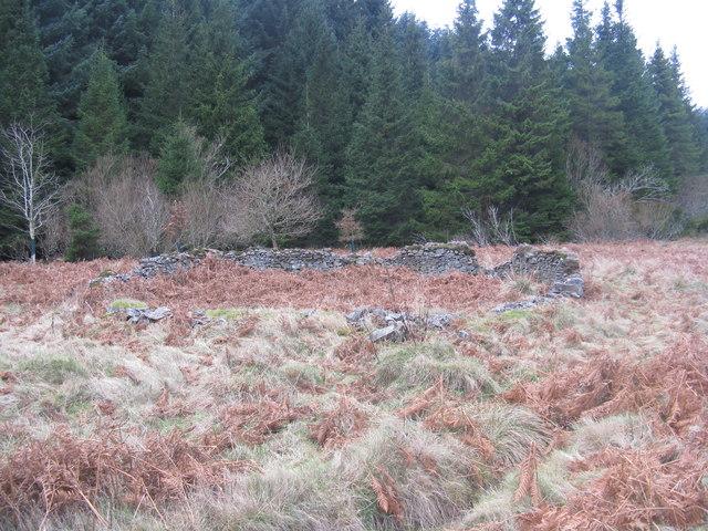Sheepfold in the Lammermuir Hills