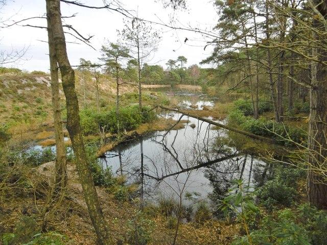 Creech Heath, former pit