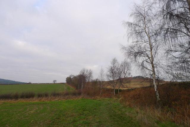 Footpath along the west boundary of Bradgate Park