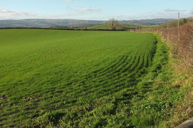 Field near Higher Penn