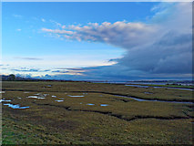 NH6265 : A view over the saltings to the Cromarty Firth (low tide) by Julian Paren
