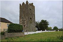 R4138 : Castles of Munster: Lissamota, Limerick (5) by Mike Searle