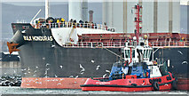 "J3576 : The tug ""Masterman"" and gulls, Belfast harbour (January 2019) by Albert Bridge"