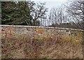 NH7674 : Blocked Footpath Access Kildary by valenta