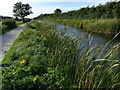 SK6336 : The disused Grantham Canal by Mat Fascione