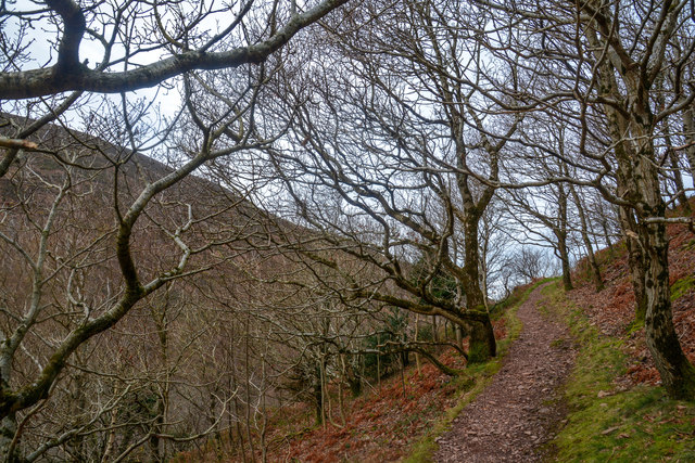 North Devon : Footpath