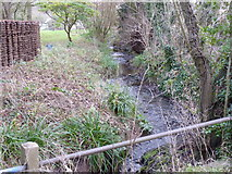 SO9568 : Stream near Sugarbrook Manor, Stoke Pound, Bromsgrove by Jeff Gogarty