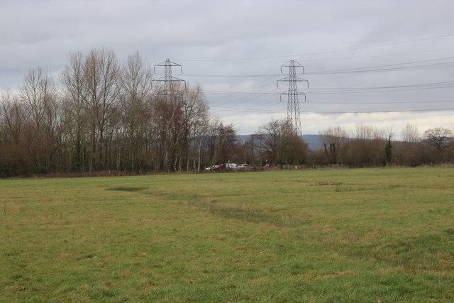 Meadow, Great Traston Meadows LNR