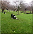 SO2801 : Benches and trees in Pontypool Park by Jaggery