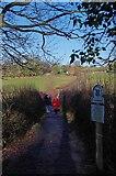 TQ4468 : A Hawkwood Path by Glyn Baker