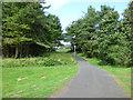 NS3137 : Cycle path at Marine Drive by Thomas Nugent