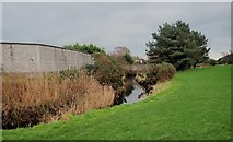J3731 : Flood defence wall along the Burren River in Islands Park by Eric Jones