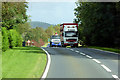 NX3964 : HGV on the A75 near Newton Stewart by David Dixon