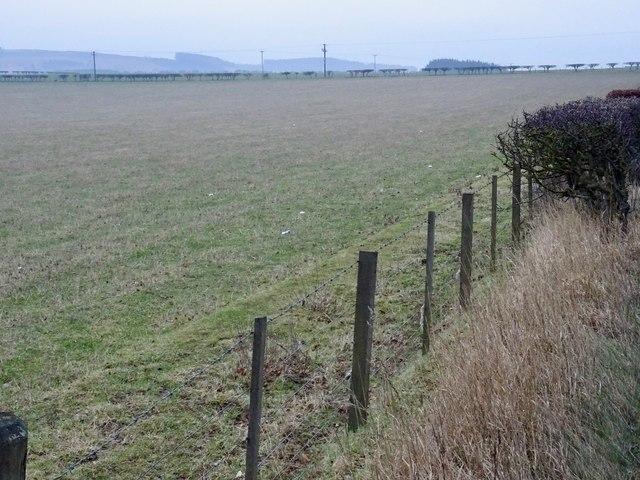 Field beside the A697