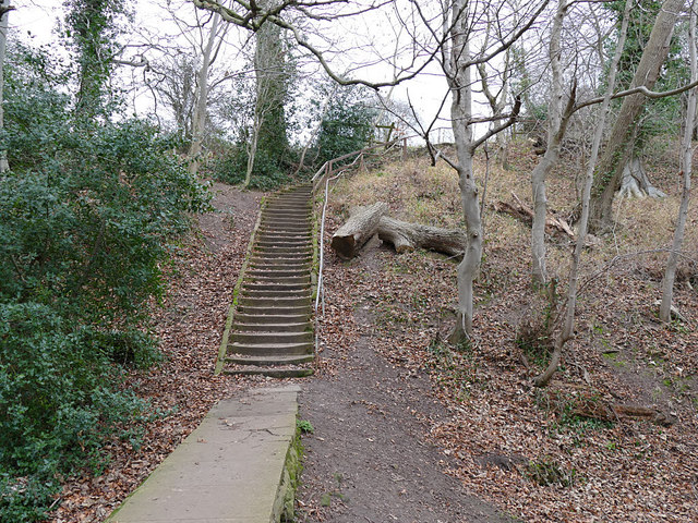 Fitts Steps on the Esk Valley Way