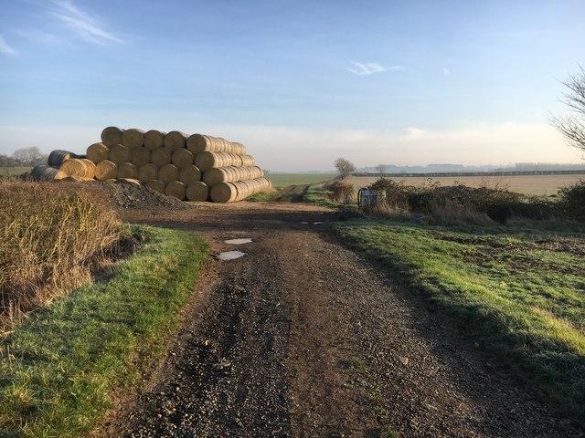 Path to Norduck Farm