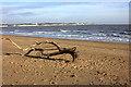 TR3561 : Sandwich Bay beach. Driftwood by Robert Eva