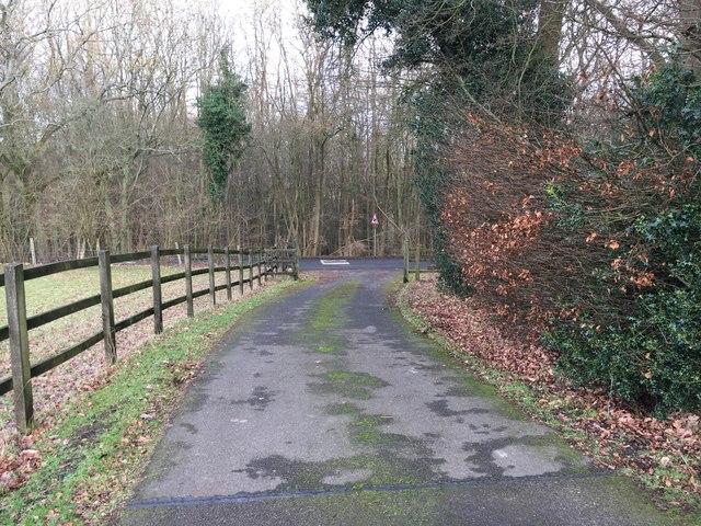 Path coming down to Tatnall's Wood