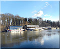 TQ1675 : Moorings on Isleworth Ait by Des Blenkinsopp