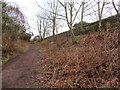 SJ2484 : Footpath in Thurstaston Common and boundary stone #7 by John S Turner